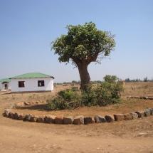 africa 2015 330