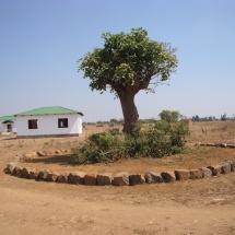 africa 2015 331